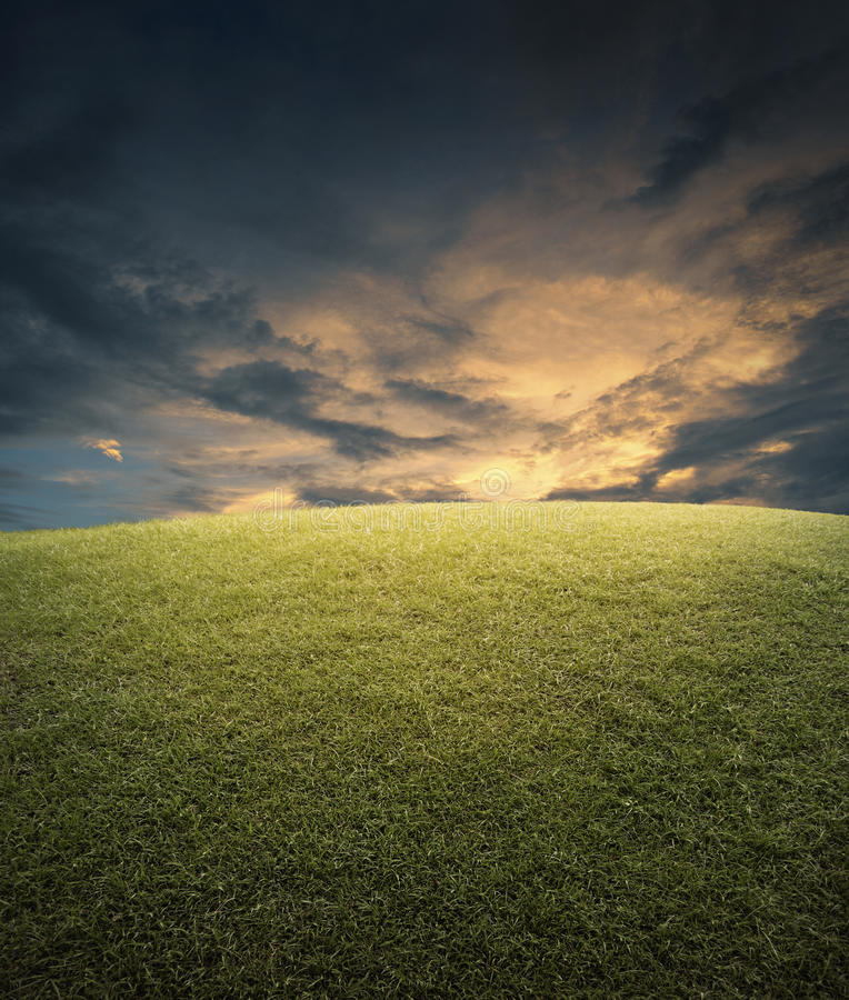 Empty space, field of green grass and sky. Evening time stock image