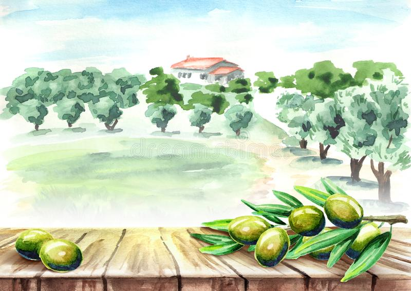 Empty table with olive brunch in olive grove landscape. Watercolor hand drawn background royalty free illustration
