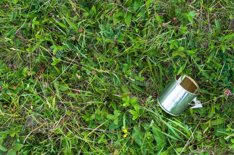 Empty tin can on the grass, human negligence. In Romania royalty free stock image