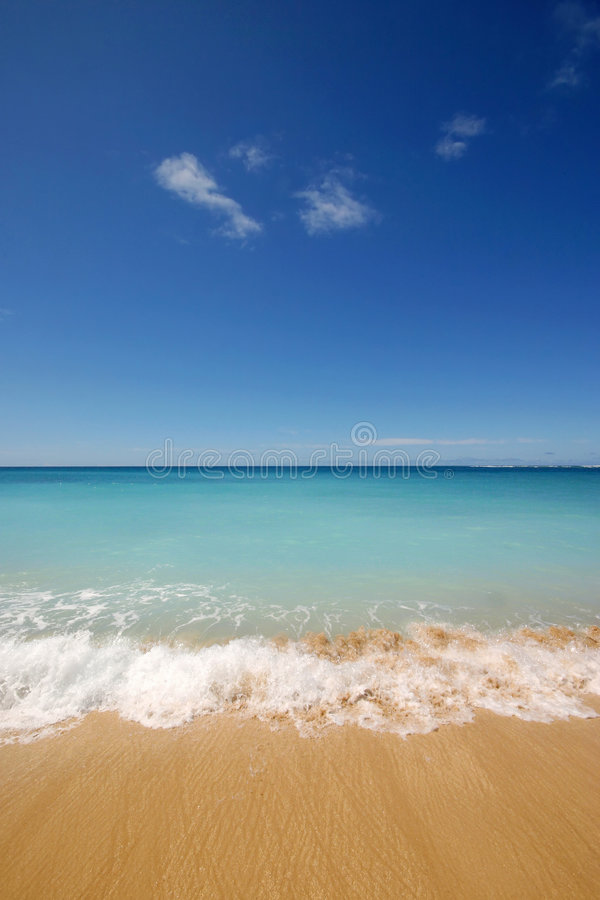 Download Empty Tropical Beach stock image. Image of loneliness - 7549821