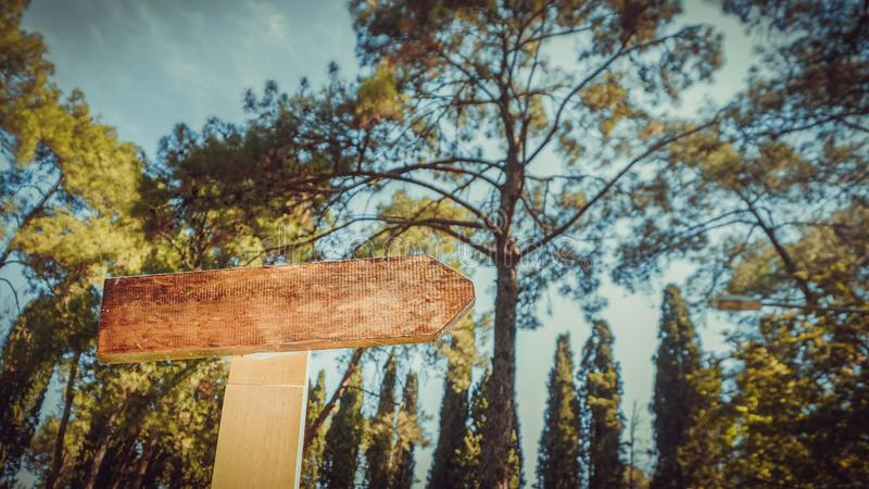 Empty vintage road sign isolated on forest backround. Wooden material royalty free stock image