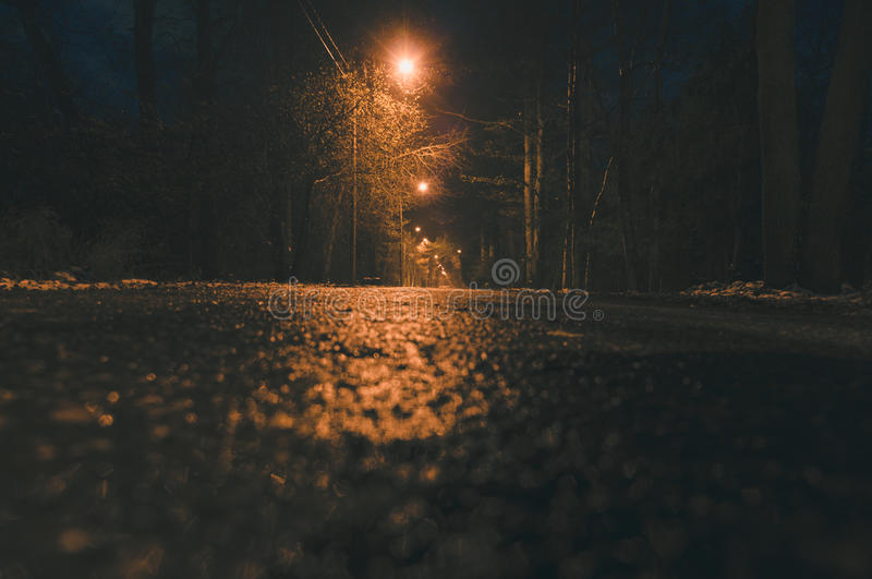 Empty wet asphalt road and lamppost lights at night. View from ground level royalty free stock photo