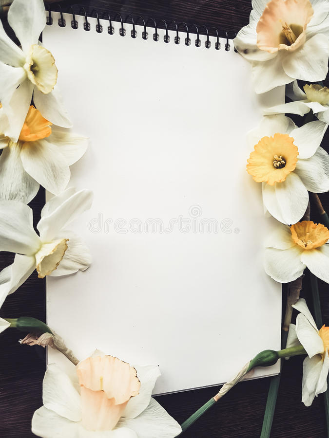 Empty white album sheet with light flowers stock photography