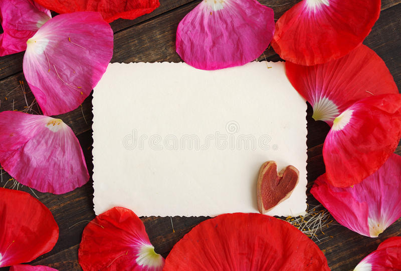 Empty white ancient photograph with decorative heart on a wooden surface in the scattered pink poppy petals. royalty free stock image