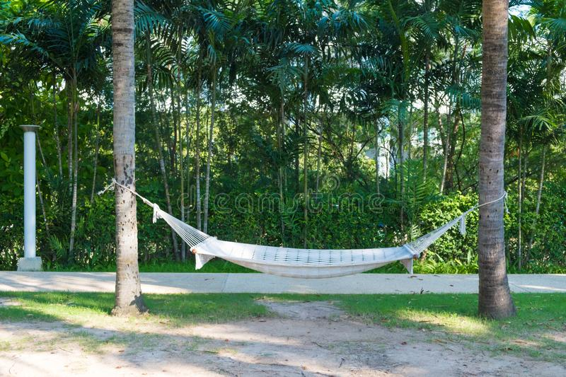 Empty white hammock hanging between two palm trees in garden with green field near the beach. Relaxation concept royalty free stock images