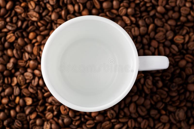 Empty white mug among coffee beans, top view stock images