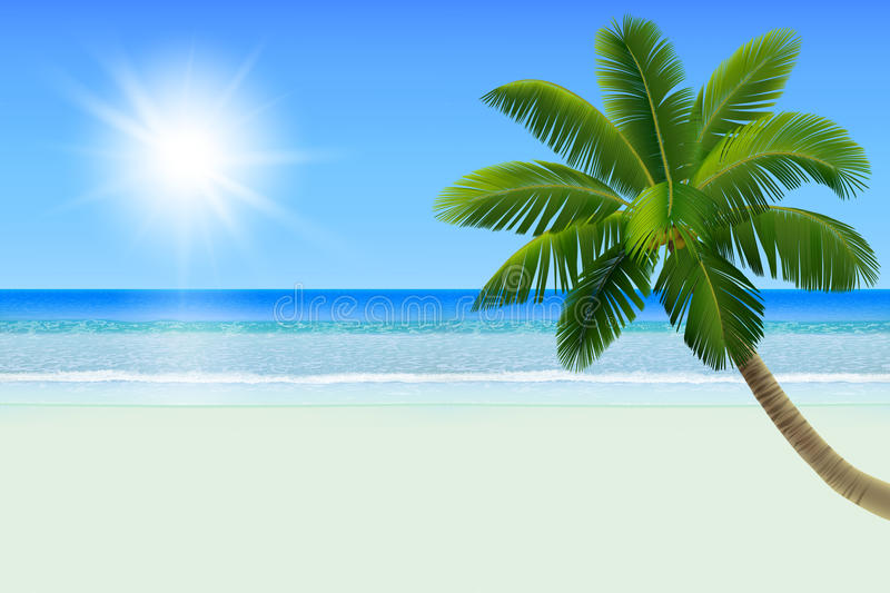 Empty white tropical beach with a palm a coconut tree. Realistic vector illustration stock illustration