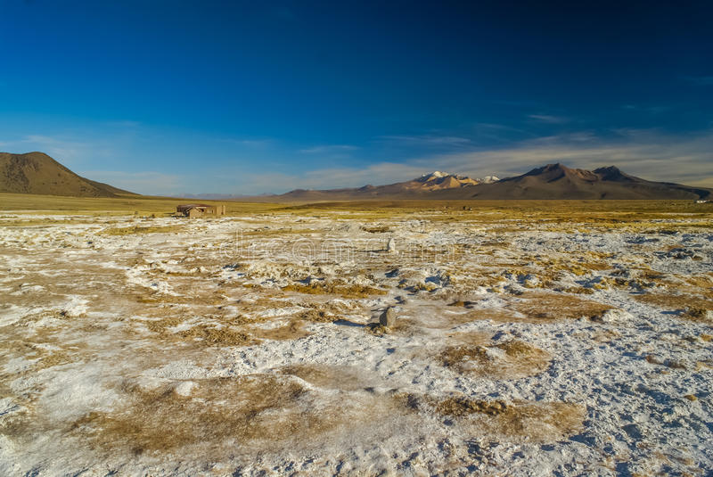 Empty wilderness in Bolivia. Lonely wilderness with mountains in distance in Parque Nacional Sajama in Bolivia, South America stock photography