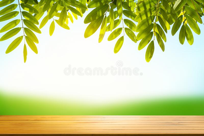 Empty wood table top on blur abstract green from garden house on stock images