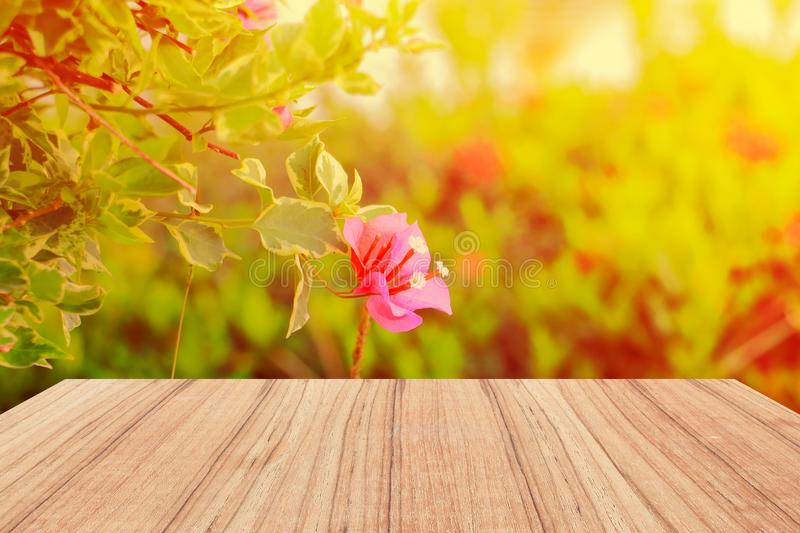 Empty wood texture board floor shelf with flower in nature background with copy space add text.  royalty free stock photo