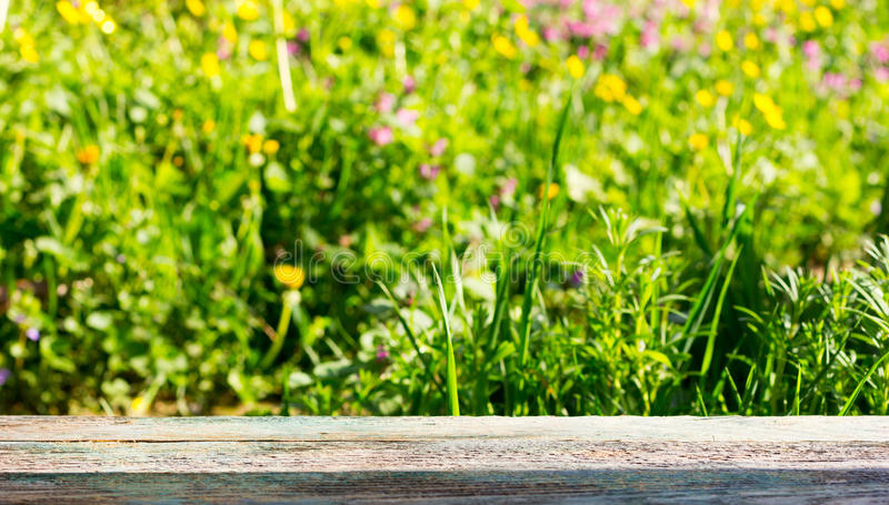 Empty wooden board on a background of meadows with flowering herbs in the summer sunny day stock photos