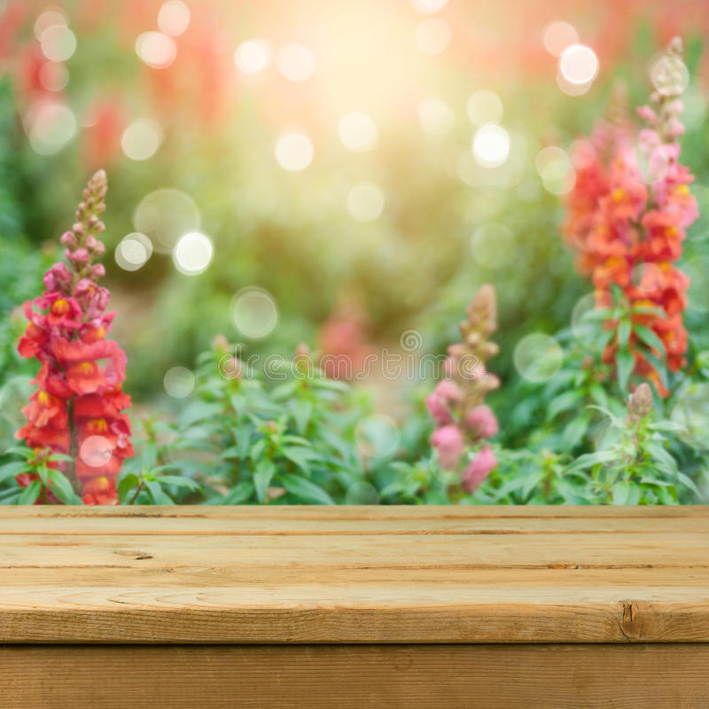 Empty wooden deck table over blurred flower field background for product montage display. Spring or summer. Concept royalty free stock images