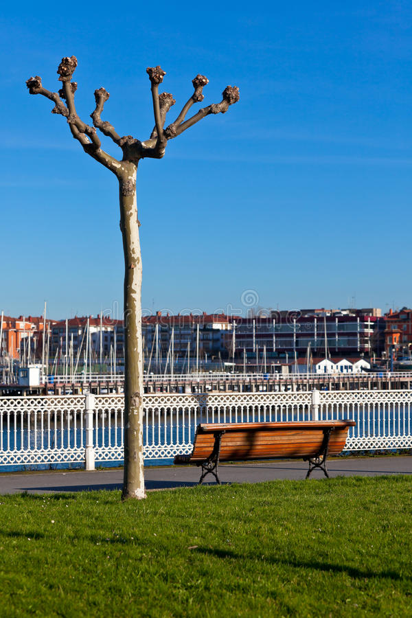 Download Empty Wooden Park Bench With Marina View Royalty Free Stock Images - Image: 30966899
