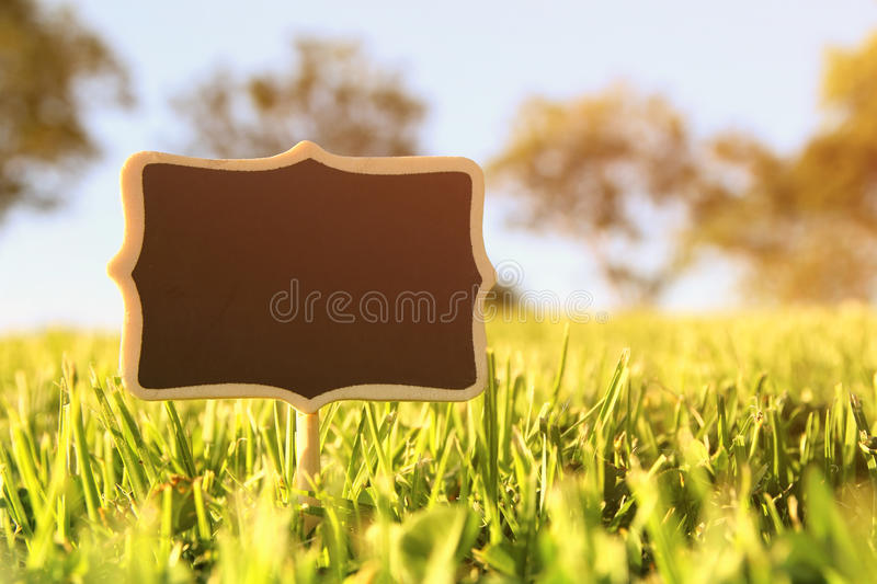 Empty wooden sign in the forest, garden or park royalty free stock photos