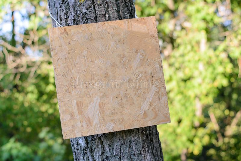 Empty wooden signboard on tree in park advertising ad advert advertisement poster placard bigboard board attention announcement co stock image