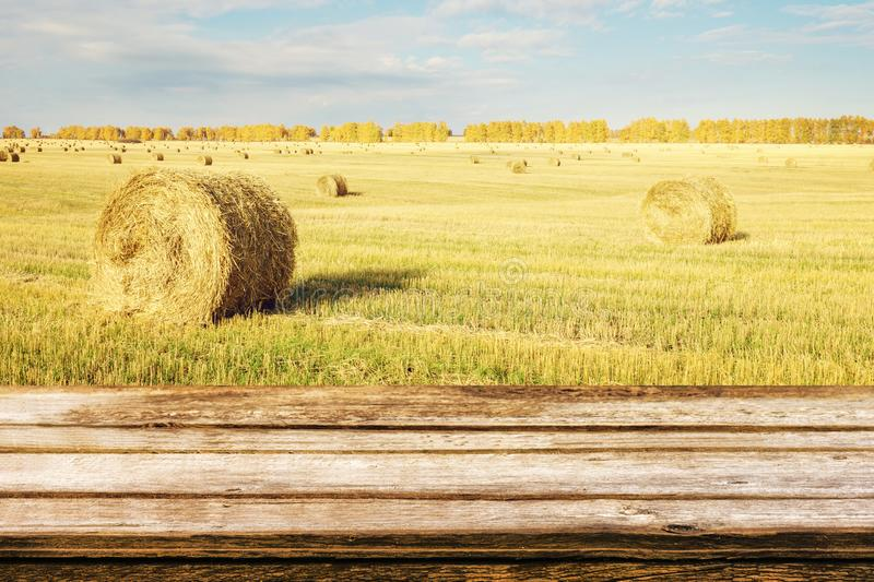 Empty wooden table with autumn landscape of beveled field and straw bales. Mock up for display or montage products. Empty wooden table with autumn landscape of royalty free stock photo