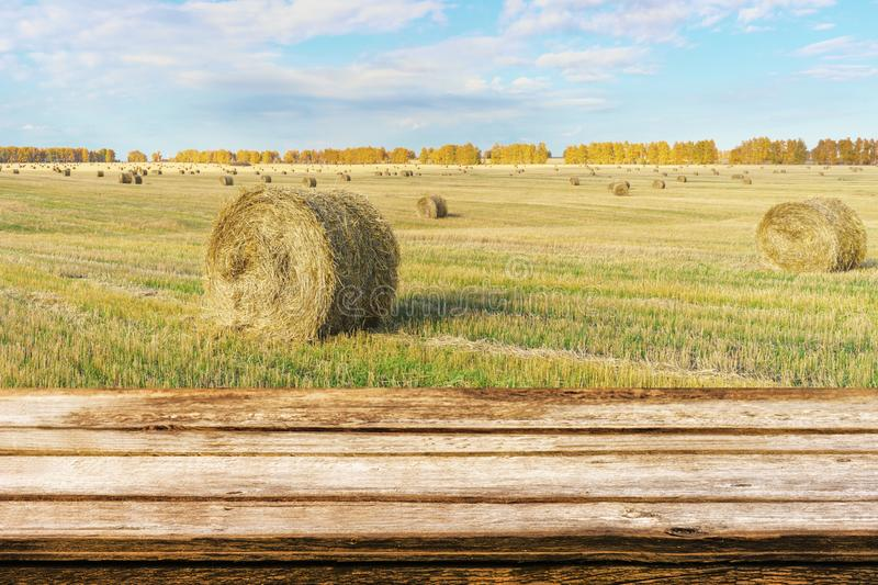 Empty wooden table with autumn landscape of beveled field and straw bales. Mock up for display or montage products. Empty wooden table with autumn landscape of royalty free stock image