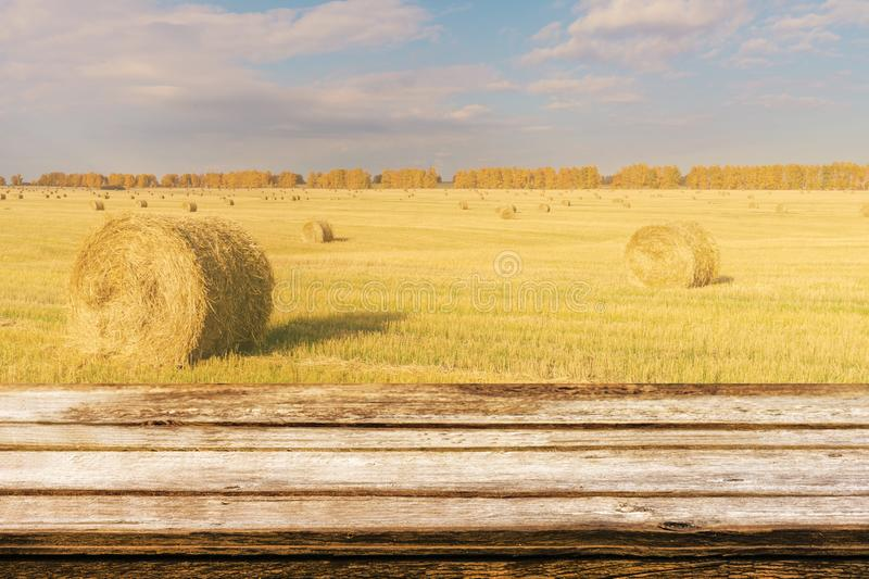 Empty wooden table with autumn landscape of beveled field and straw bales. Mock up for display or montage products. Empty wooden table with autumn landscape of stock images