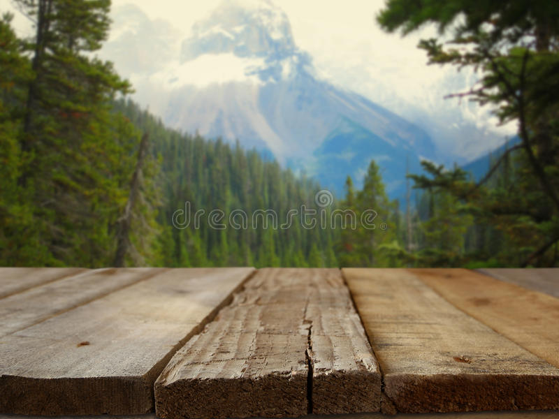 Empty wooden table in front of fir forest and snowy mountains royalty free stock photos