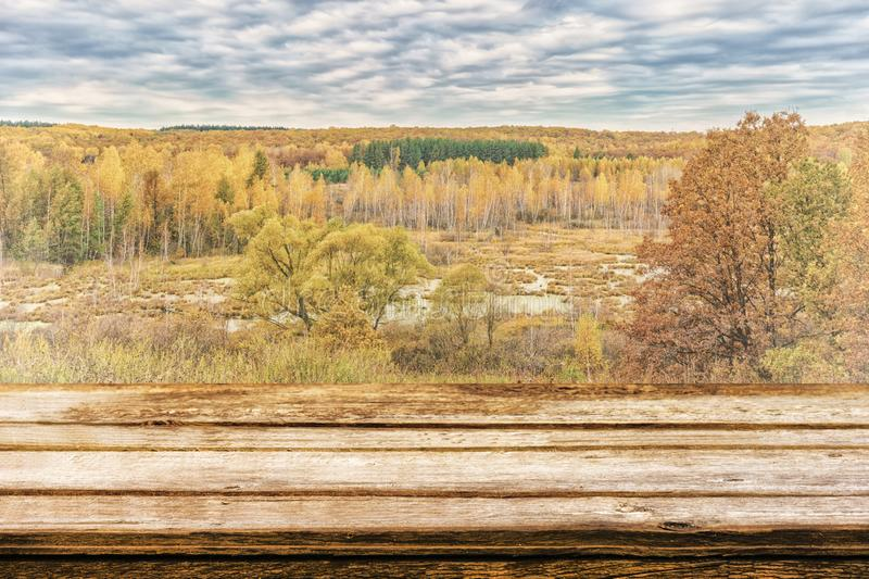 Empty wooden table with picturesque autumn landscape of view from the hill to the lowland with forest and swamps. Mock up for royalty free stock photography