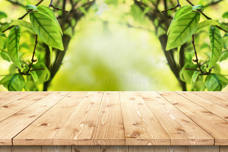 Empty Wooden Table In A Sun Drenched Summer Garden Stock