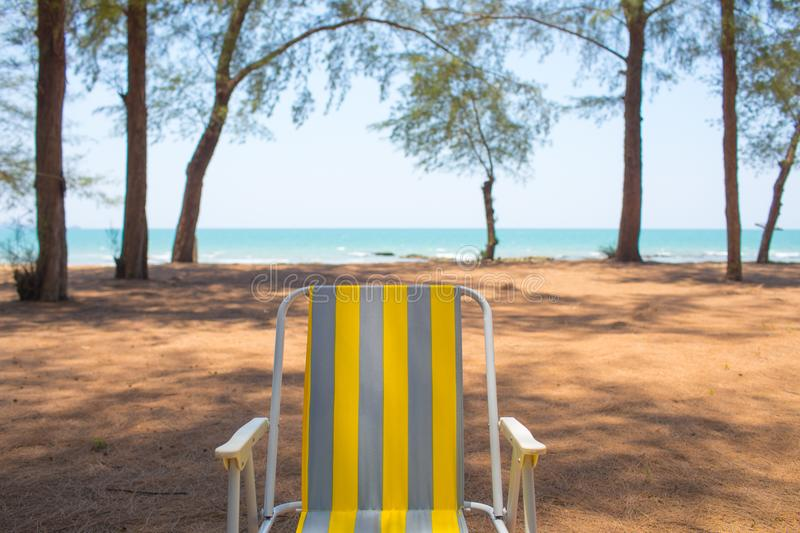 An empty yellow beach chair put by the pine tree beach showing breezy weather. An empty yellow beach chair put on the sand beach around with pine tree showing royalty free stock image