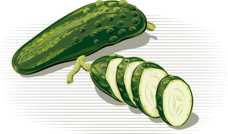 En één gehele komkommer, besnoeiing in plakken royalty-vrije illustratie