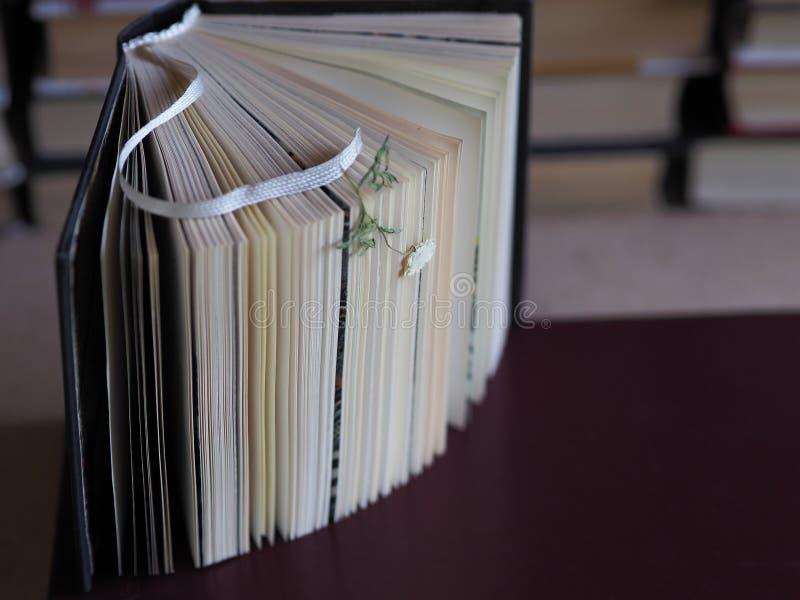 En öppen bok med en bokmärke och en torr liten blomma royaltyfri fotografi