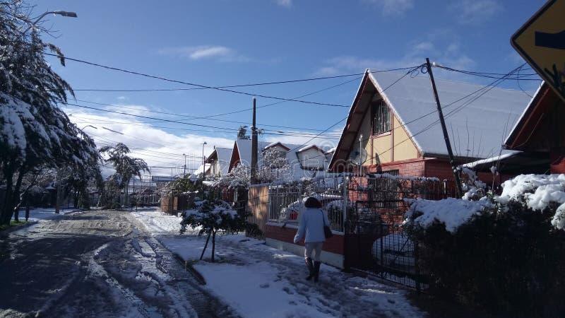 EN Λα Foresta, Puente Alto βιλών Nieve στοκ εικόνες