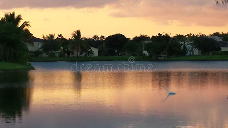 En aftonpromenad arkivfoton
