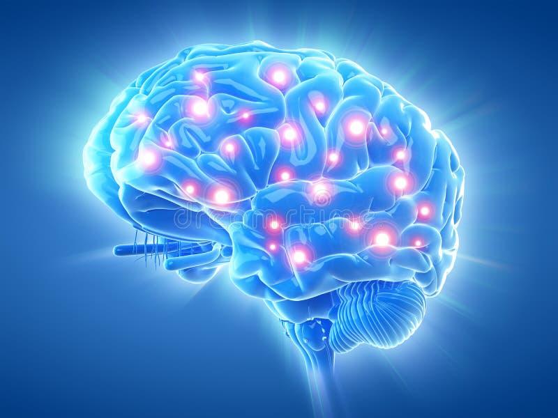 En aktiv hjärna royaltyfri illustrationer