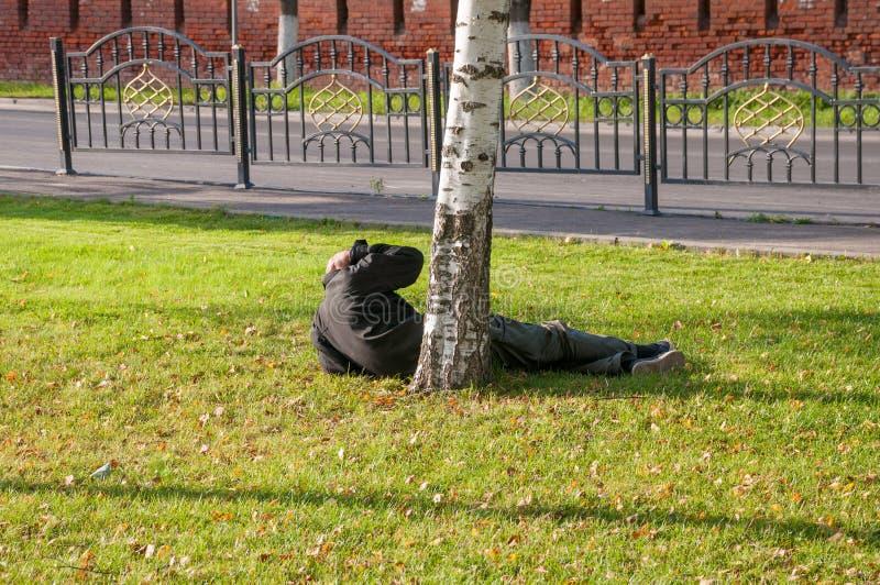 En alkis som ligger på gräset, vaknar upp royaltyfri foto