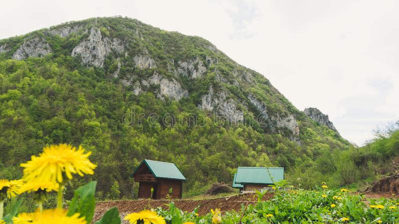 En alpin ?ng med l?sa blommor och ett gammalt tr?lantbrukarhem kojakabin i bergfj?ll?ngar p? det lantliga nedg?nglandskapet arkivbilder