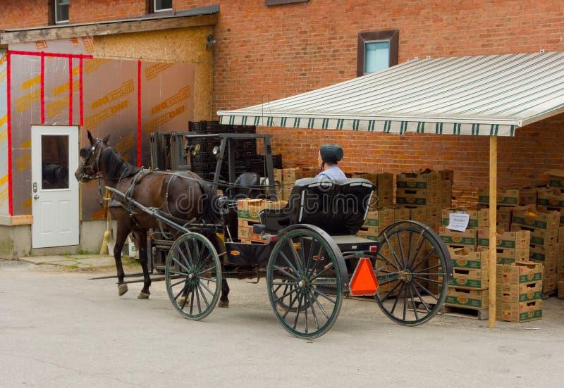 En amish dam som väntar för att köpa frukt på ett lager i ontario royaltyfria foton