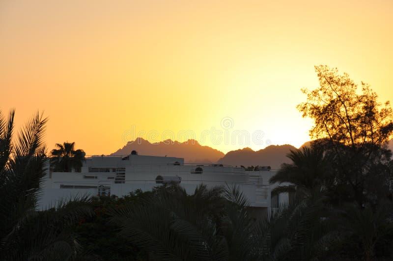 En annan härlig solnedgång i Egypten arkivbilder