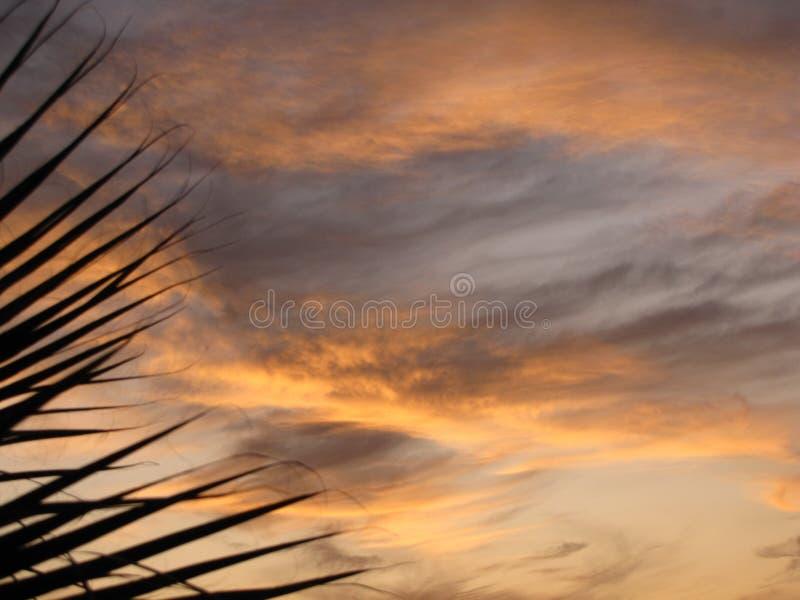 En annan härlig solnedgång i Egypten arkivfoto