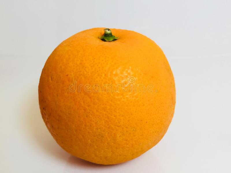 En apelsinaterad studioklipp royaltyfri fotografi