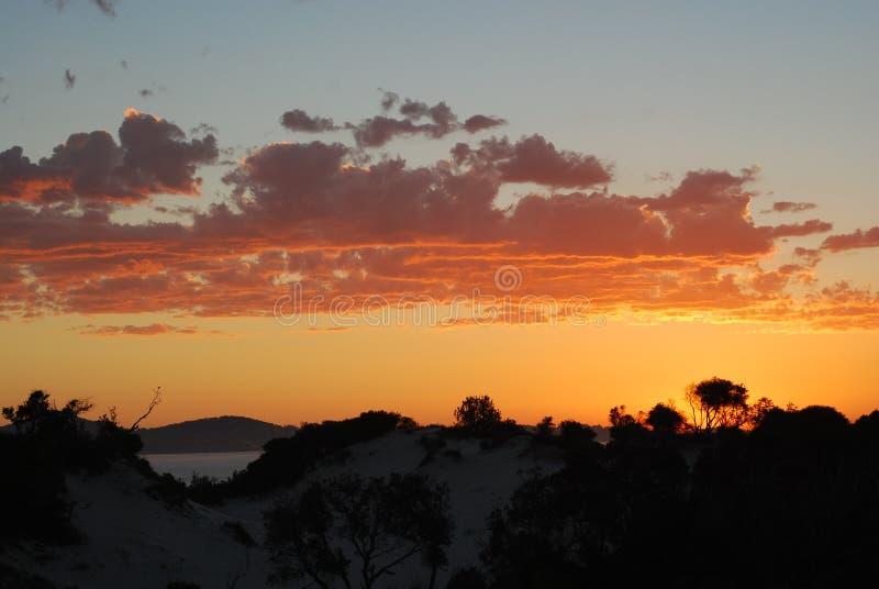 En av den australiska stranden i New South Wales royaltyfria foton