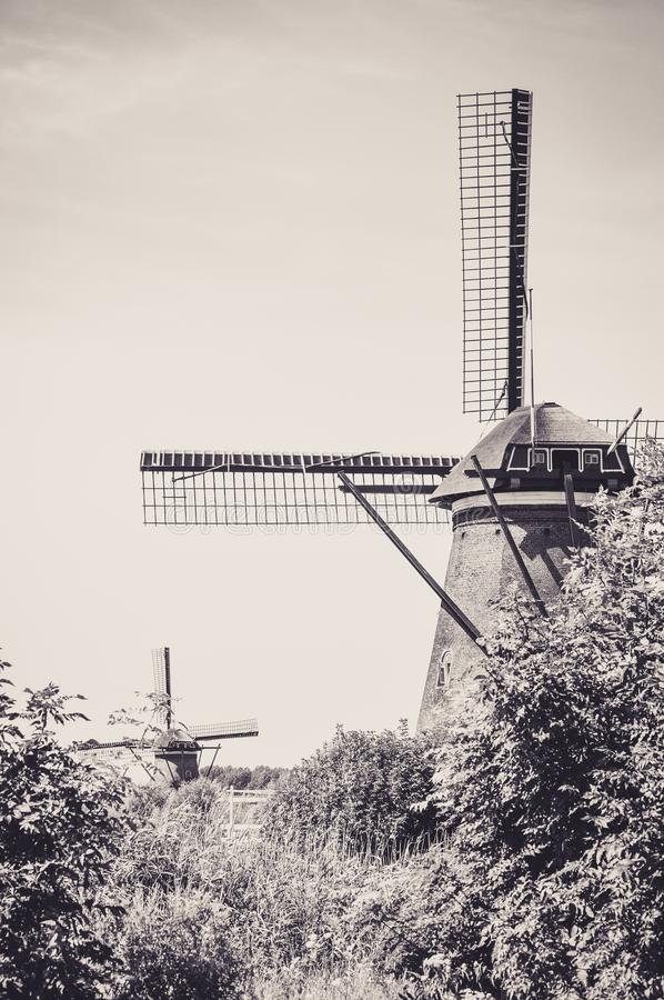 En av det talrikt maler att sv?va p? floderna av Kinderdijk fotografering för bildbyråer