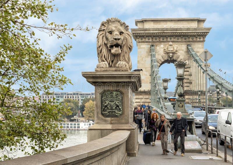En av fyra lejonskulpturer av Janos Marshako, på slut av kedjebron, Budapest, Ungern royaltyfri bild