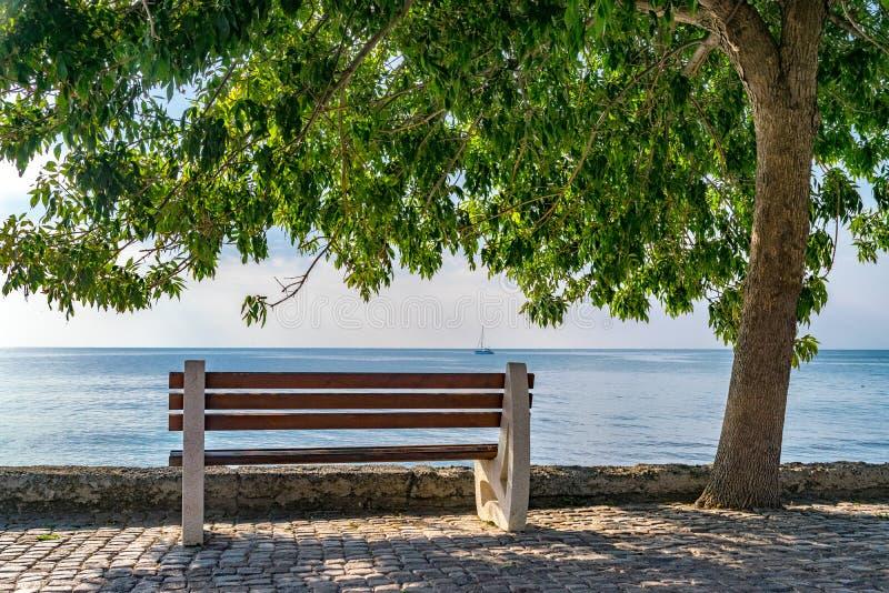 En bänk och ett träd mot ser i Nessebar den forntida staden på den bulgarBlack Sea kusten i Nessebar Stillhet avkoppling, arkivfoto