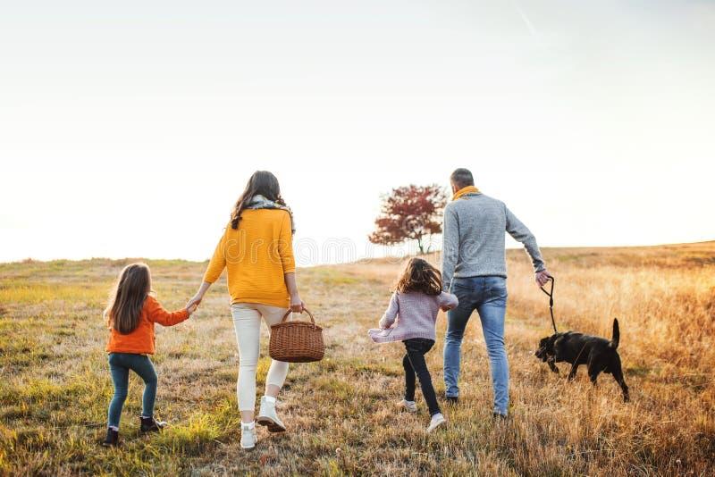 En bakre sikt av familjen med två småbarn och en hund på går i höstnatur royaltyfri bild