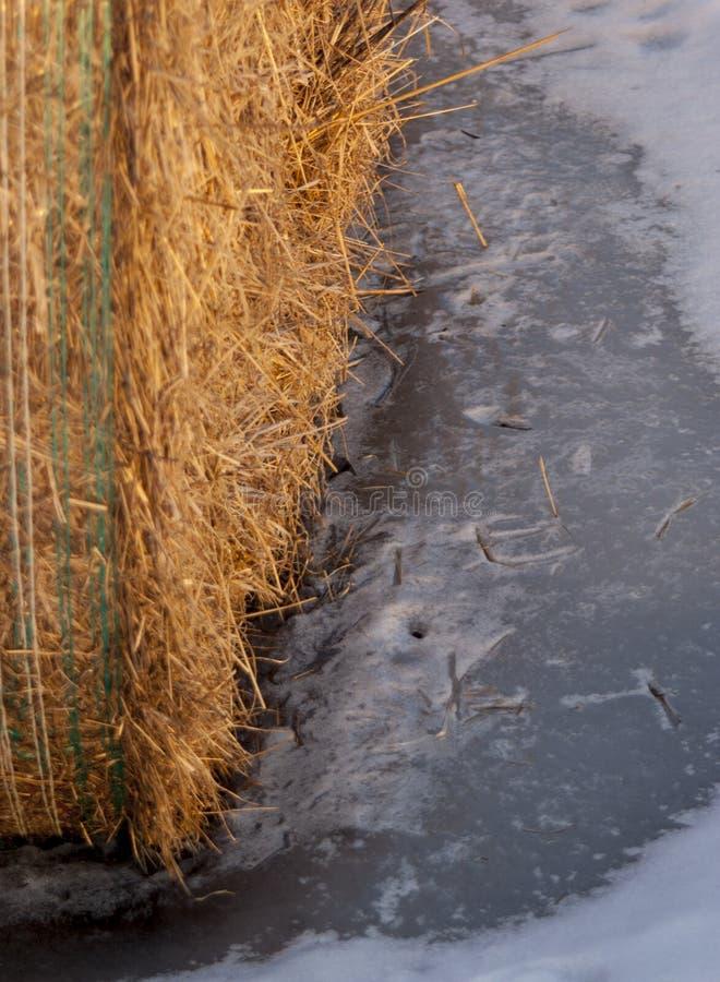 En bal av hö i vinter arkivfoton