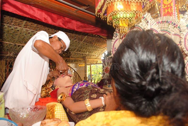 En Balineseflicka under Metatah ceremoni arkivfoton