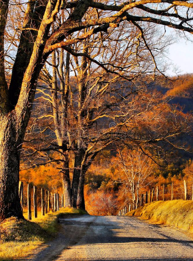 En bana över dalen arkivfoton
