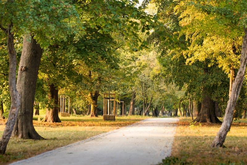 En bana i parkerar, medan solnedgången är ideal för en försiktig promenad royaltyfria foton