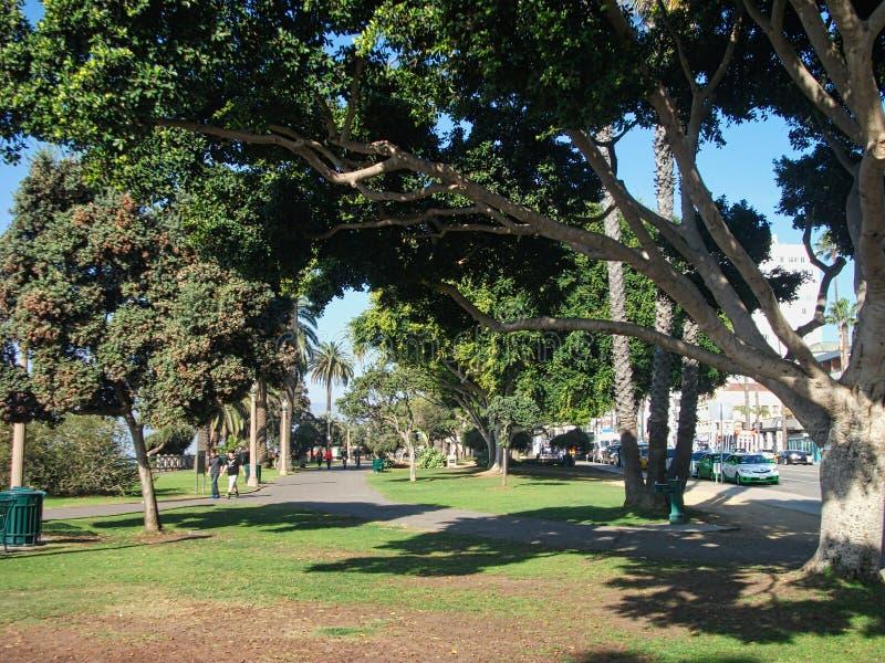 en bana med träd bredvid royaltyfri foto
