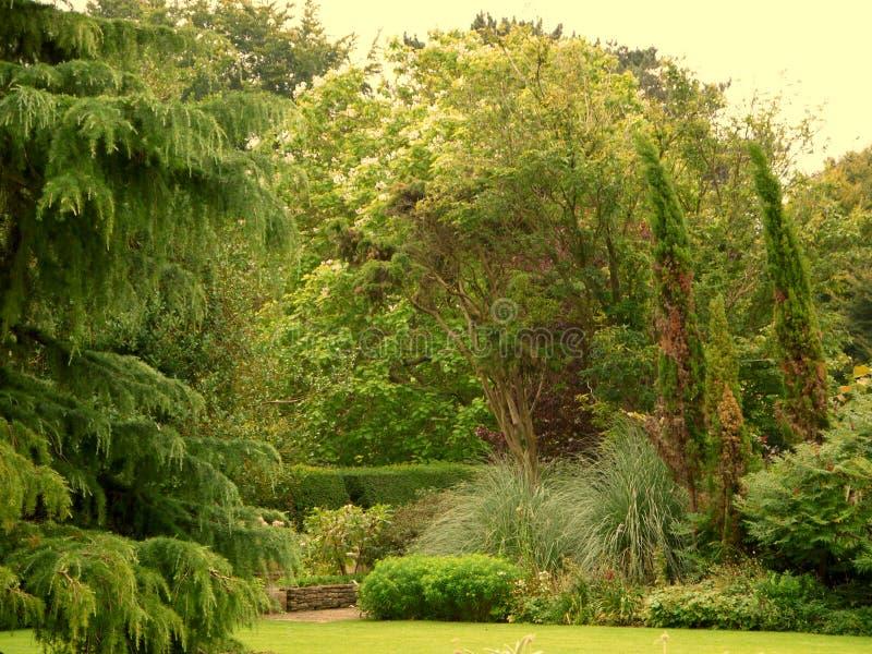 En beautifuly landskap trädgård i den Cotswolds regionen av England royaltyfria foton