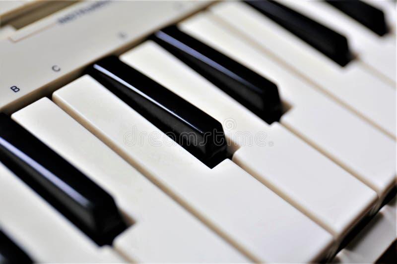 Download En Begreppsbild Av Ett Pianotangentbord Arkivfoto - Bild av tangent, blankt: 106826722