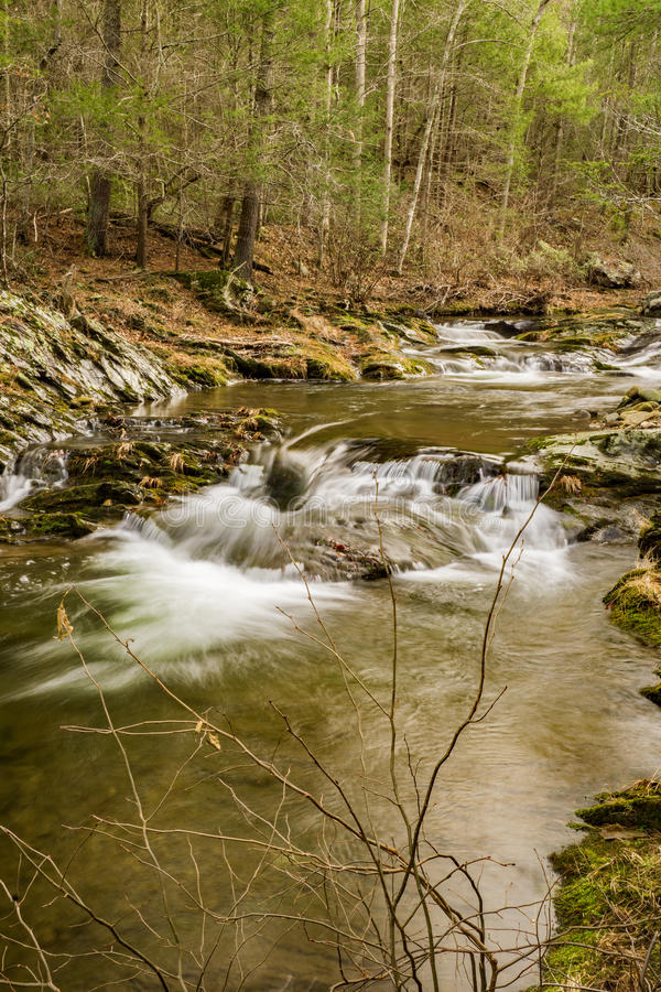 En bergforellström i den blåa Ridge Mountains av Virginia, USA arkivbilder
